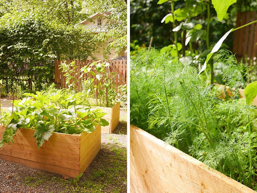 tuulinenpaiva.fi-garden-raised-garden-beds