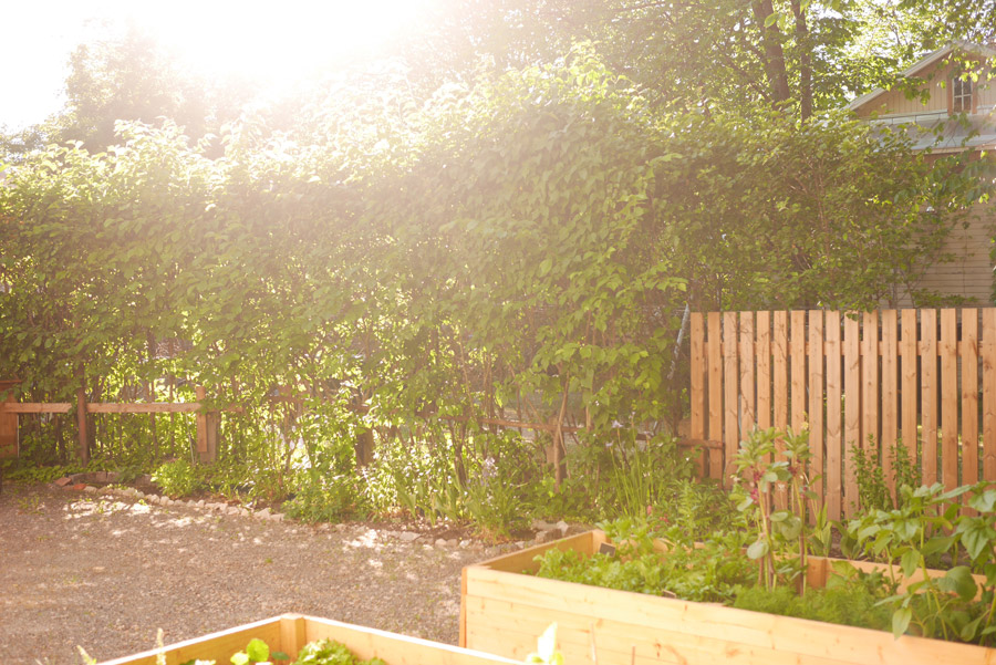 tuulinenpaiva.fi-garden