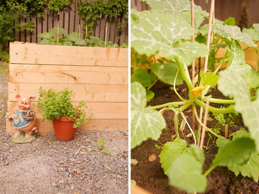 tuulinenpaiva.fi-raised-garden-beds1