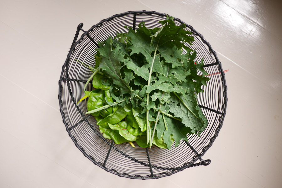 tuulinenpaiva.fi-chard-and-kale-from-my-garden