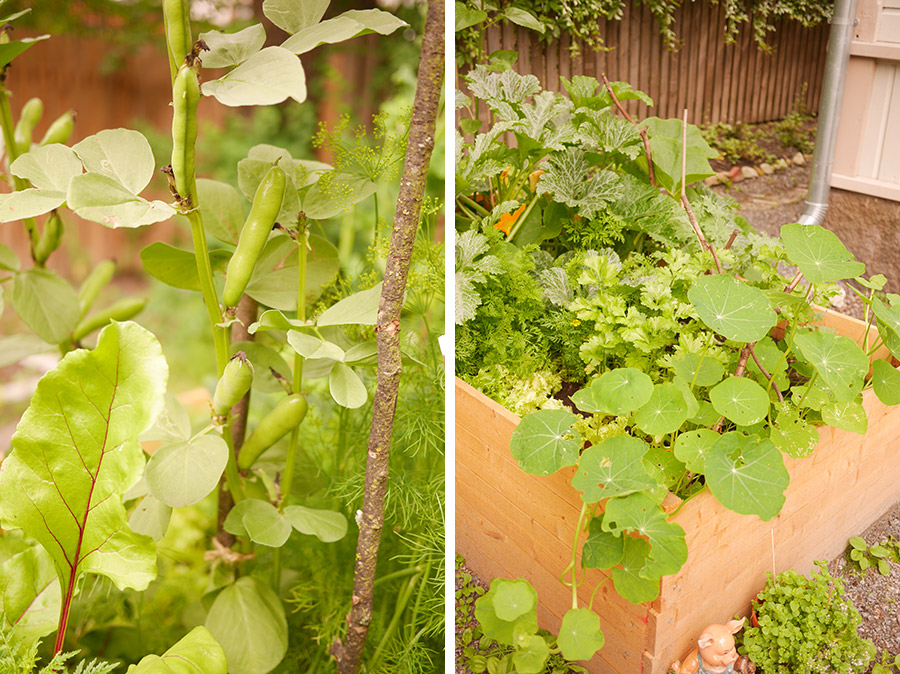 tuulinenpaiva.fi-raised-garden-beds