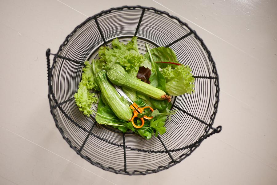 tuulinenpaiva.fi-veggies-from-the-garden