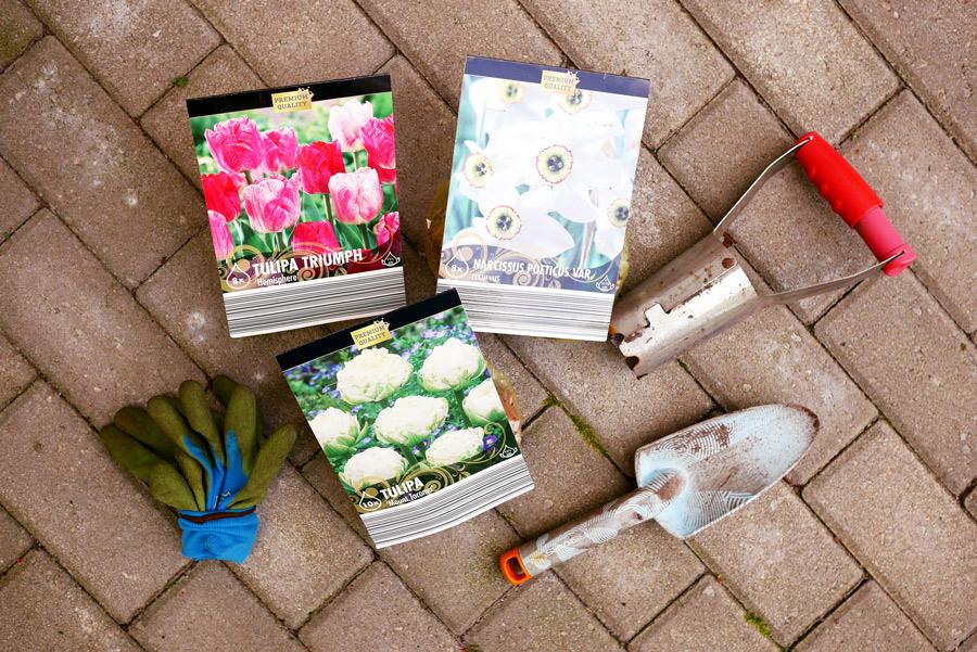 tuulinenpaiva-fi-syyspuuhat-kukkasipulit